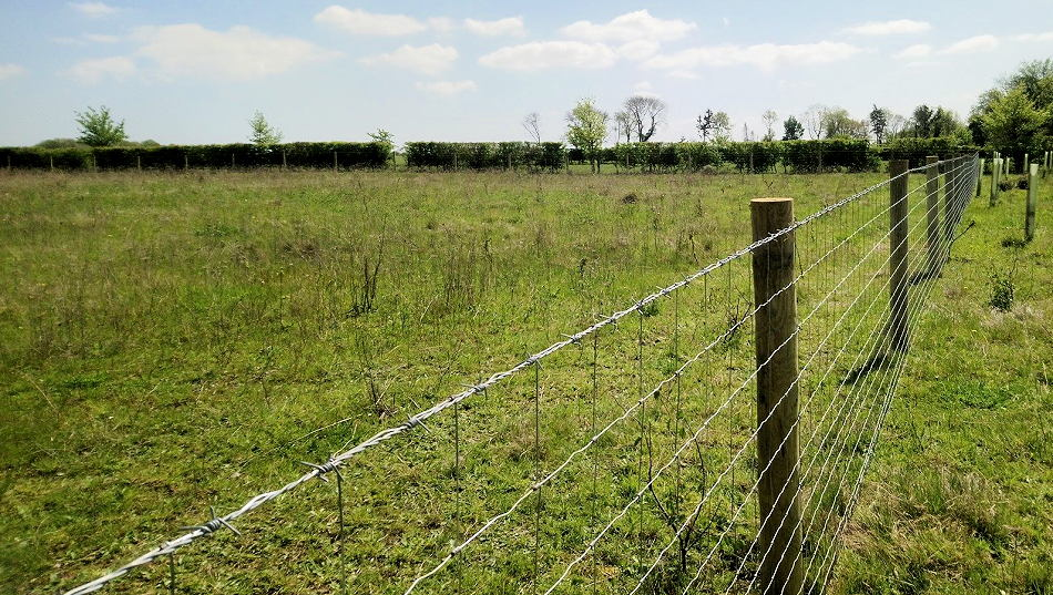 Fencing Contractors offering agricultural, equestrian and commercial fencing installations in Essex and Suffolk and East Anglia